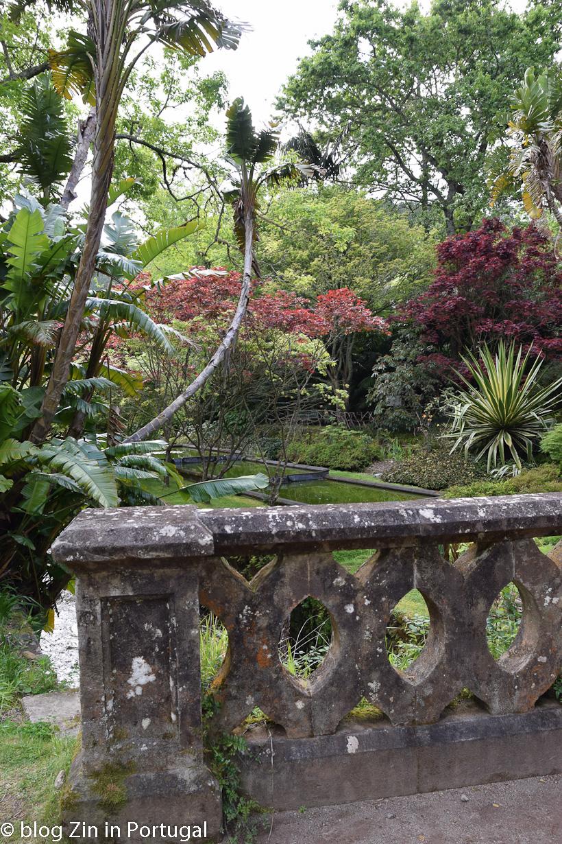 Hotel_Terra_Nostra_botanical_garden_01