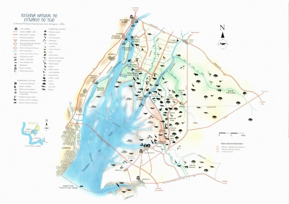 Plattegrond vogelsites estuarium van de Taag