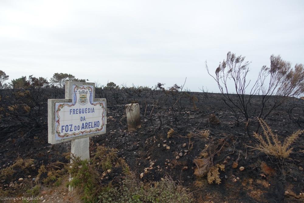 #zininportugal brand_oktober_2017_02