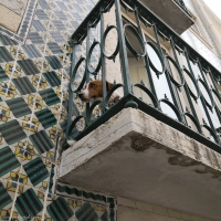 Lissabon: Portugese tegels
